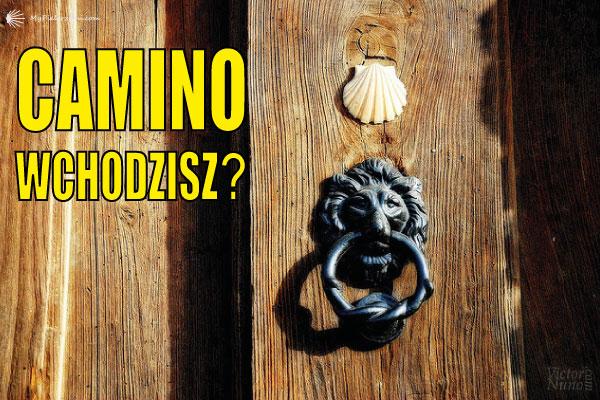 Sobota z Camino de Santiago #5 (Camino- Wchodzisz?)