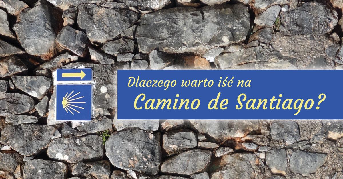 Dlaczego warto iść na Camino de Santiago?
