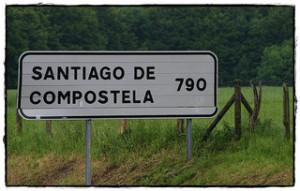 zdjęcie: Miguel. (respenda)