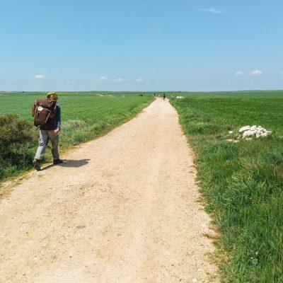 Camino Frances czerwiec 2019