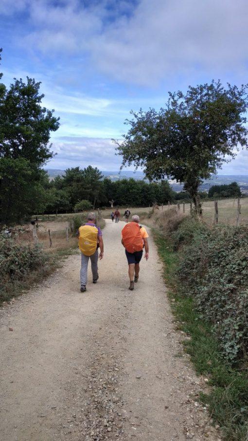 Camino de Santiago w grupie
