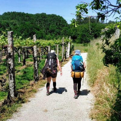 Camino Portugalskie z przewodnikiem w grupie