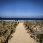 Camino brzegiem morza